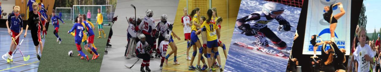Lørenskog idrettsråd